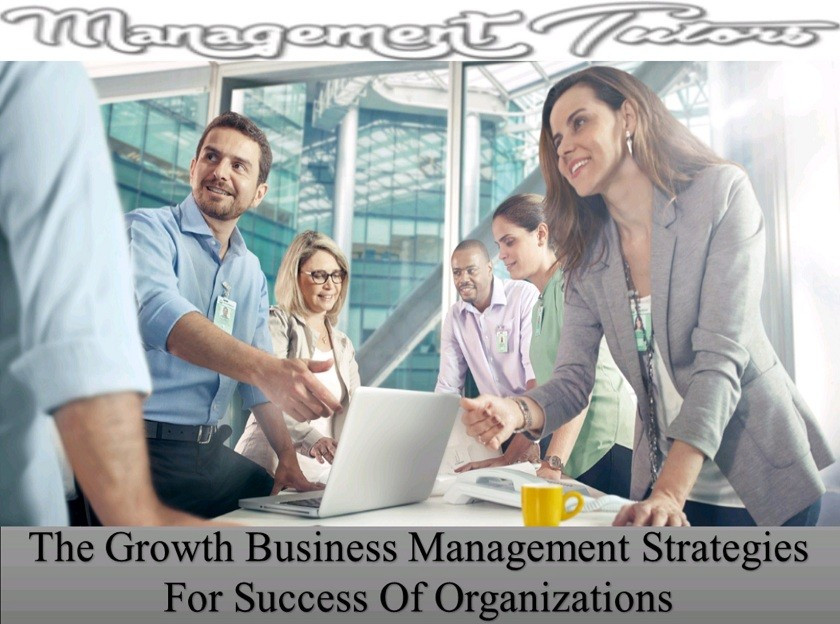 The Growth Business Management Strategies For Success Of Organizations